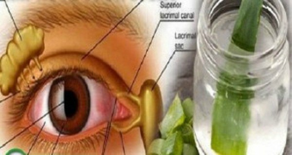 Say Goodbye to your Glasses and Improve your Sight with This Powerful Recipe!   HEALTHY FOOD ADVICE