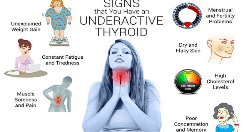 Your Thyroid Controls Your Entire Body Here Is How To Keep It
