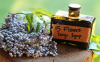 five-flavors-herbal-cough-syrup-recipe