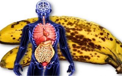 if-you-eat-2-bananas-per-day-for-a-month-this-is-what-happens-to-your-body