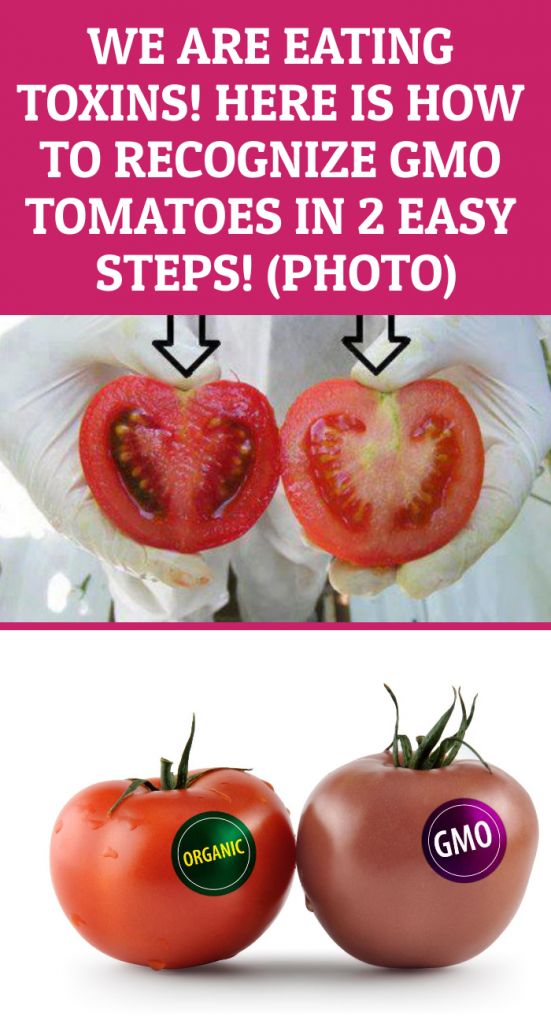 WE ARE EATING TOXINS! HERE IS HOW TO RECOGNIZE GMO TOMATOES IN 2 EASY STEPS!